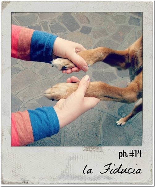 ph2012_14