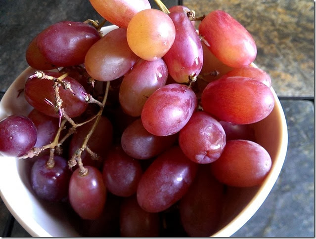 grapes-public-domain-pictures-1 (2253)