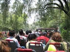 My fellow Turibus passengers
