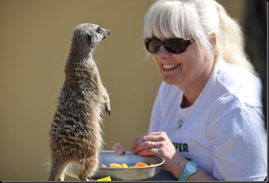 Sally Green with Meerkat (resized) 0102