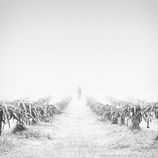 fotos-minimalistas-preto-branca-minimalist-black-white-photography-hossein-zare-desbaratinando (4)