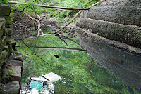 Man Made - Man Polluted