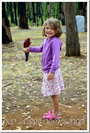 Aussie Not-Back-to-School Blog Hop ~ Our Aussie Homeschool