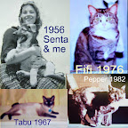 Delia with Senta in '56. Tabu joined Delia following her husband's departure to serve in Viet Nam. Fifi came to Delia in '76.  Pepper was a barn cat that Delia had spayed and then took into her care.