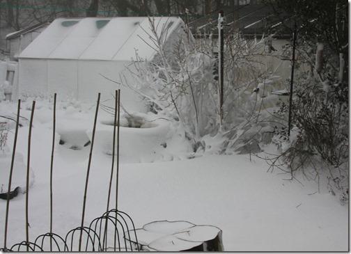 7-snow