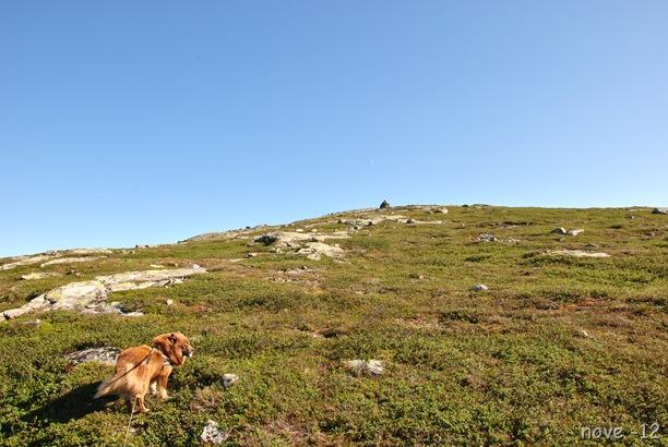 Turufjell 066