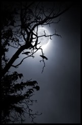 Crow_Moon_web