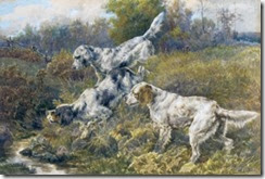 english setters at a stream