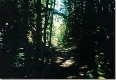 View of the Iron Goat Trail in the Rock Cut near Milepost 1718 in 2000
