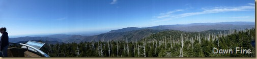 Clingmans dome_034