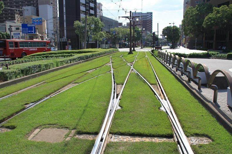 grass-tram-tracks-8