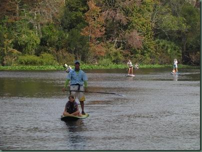 Wekiva springs State Park   paddleboarding