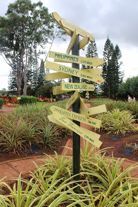 Oahu, Hawaii: Dole Plantation