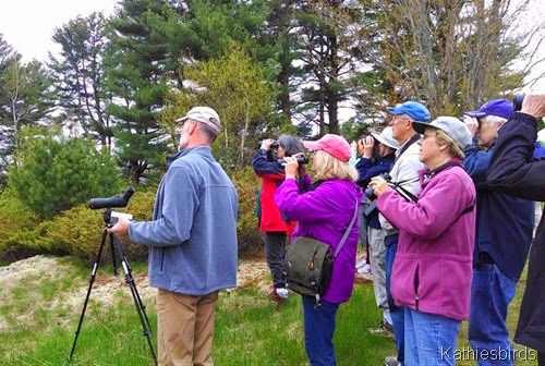 4. 5-15-14 Jan Pierson bird walk