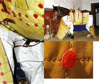 Peto de Bonijol (Tierras taurinas nº 16) 001