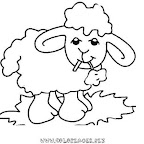 normal_27coloriage_mouton.jpg