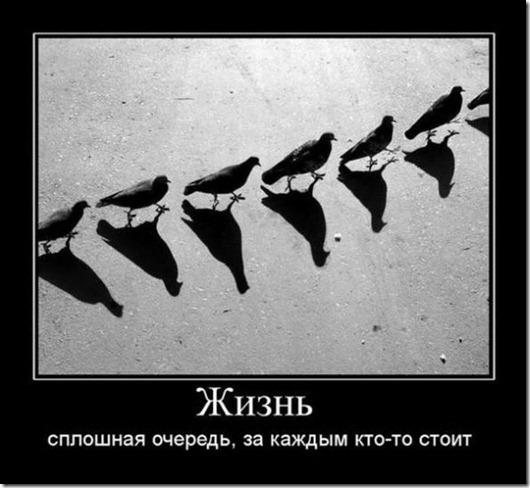 clip_image007[6]
