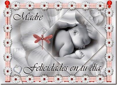 dia de las madres (3)