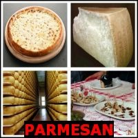 PARMESAN- Whats The Word Answers