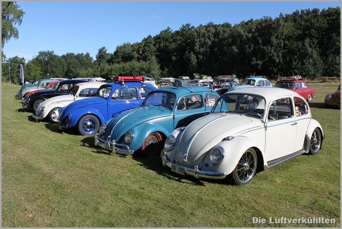 Herbie 004