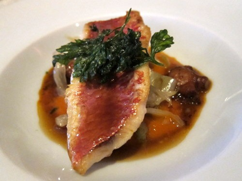 Seared Fillet of Red Mullet, Braised Octopus and Fennel, Tomato Sauce