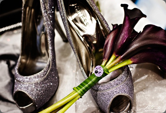 purple-silver-wedding-2 alante photo