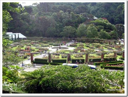 Lady Norwood Rose Gardens.