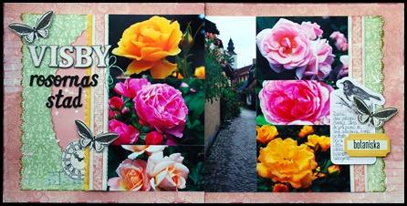 Rosornas stad båda