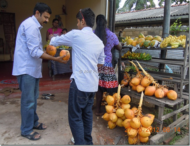 srilanka2012