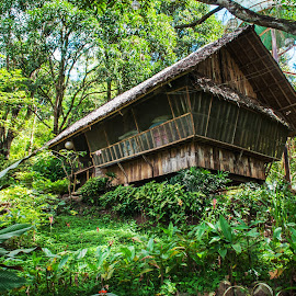 The Cabin by Victor Roman - Buildings & Architecture Homes ( camp explorer, nature, d399, house, nikon,  )