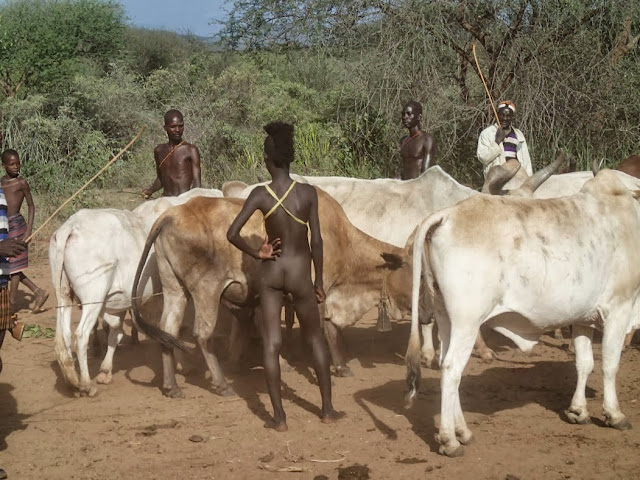 OMO Valley 077.JPG