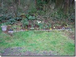 planting-flowers-1204-1