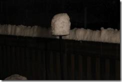 snowpocalypse  20