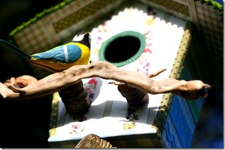 Bird house-006
