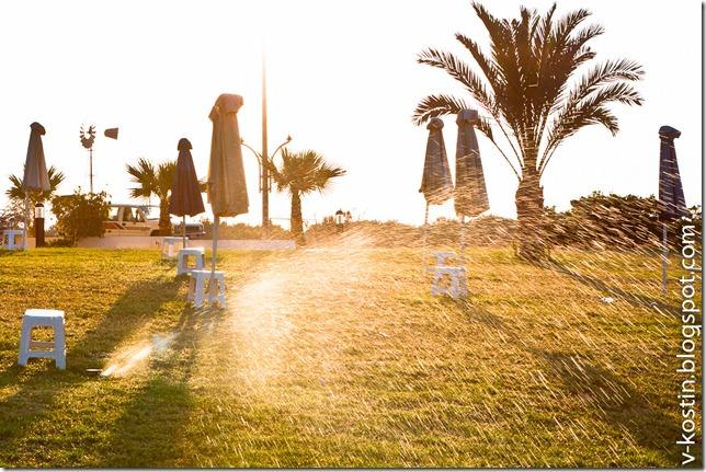 20110713_190911_cyprus_b__MG_8864