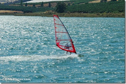 Sea of Galilee windsurfer, tb060105650
