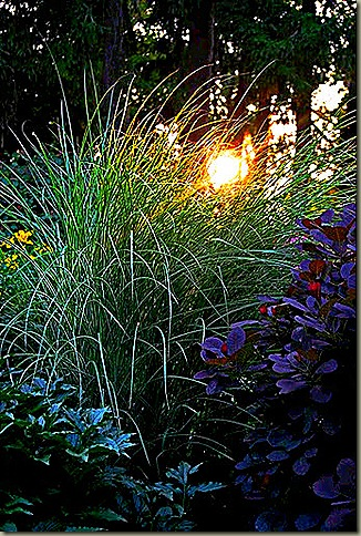 prowse grass entry_edited-1