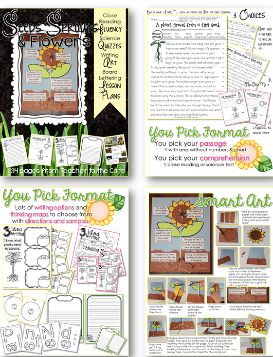 Spring Fluency social studies and science themed- fluency art writing and quizzes