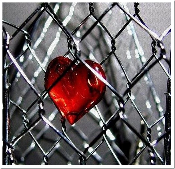 imágenes con corazones para San Valentín, esposas con un corazón