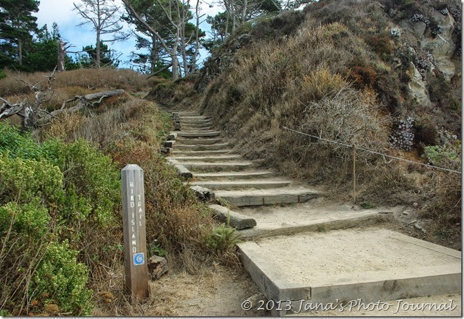 Bird Island Trail, Point Lobos, California