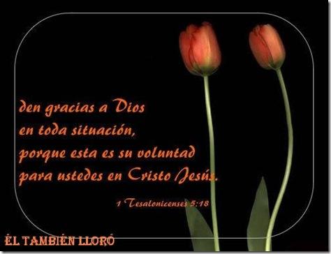 TarjetasCristianas-ElTambienLloro-0604