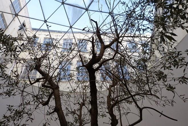 Custard Factory, Birmingham, дерево под стеклянной крышей