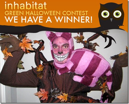 Gato de Cheshire disfraz (2)