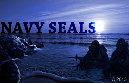navy_seals_by_stephenava-d1dh6ea