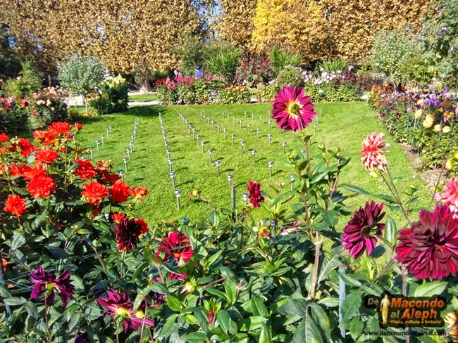 Visitar Paris Jardin de Plantes 2