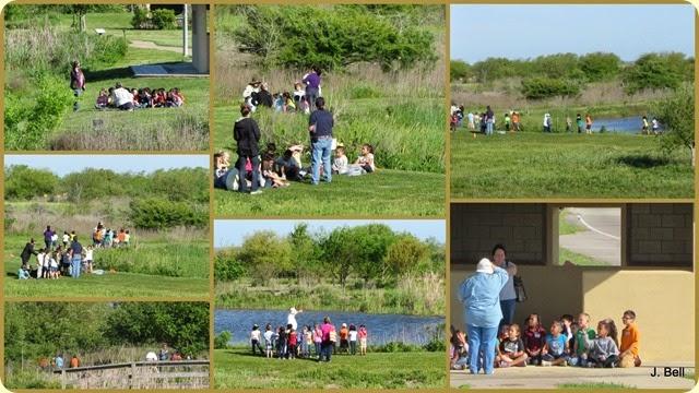 75 Anahuac NWR 2013-201427