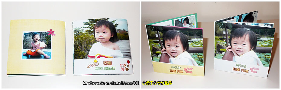 2011book15.jpg