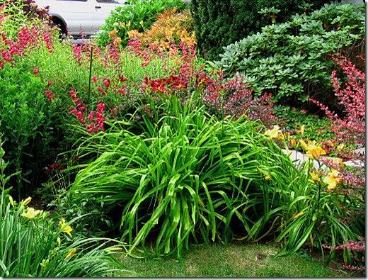 garden-front-bed
