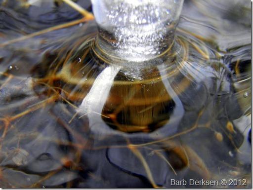 Barb Derksen Ice 2012  (18)