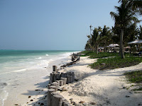 East coast beaches - Zanzibar